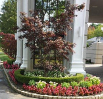 Ciaglia Landscape Design -Matawan, Holmdel, Marlboro, Rumson