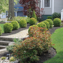 Ciaglia Landscaping, Monmouth County Landscaping, Marlboro Landscape Design