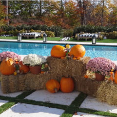 Ciaglia Landscape Design, Seasonal Planting, Monmouth County Landscaping