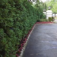 Ciaglia Landscape Design, Seasonal Planting, Rumson NJ Landscaping