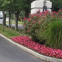 Ciaglia Landscape Design, Seasonal Planting, Marlboro NJ Landscaping
