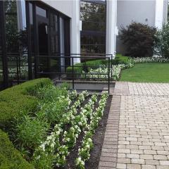 Ciaglia Landscape Design, Seasonal Planting, Holmdel NJ Landscaping