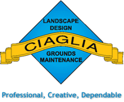 Ciaglia Landscape Design and Grounds Maintenance