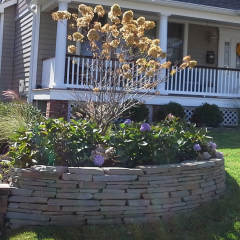 Ciaglia Landscaping, Monmouth County Landscaping, Avon NJ  Landscape Design